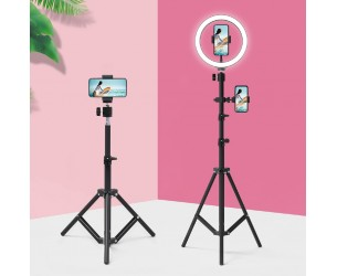 Phone Holder & Live Stand